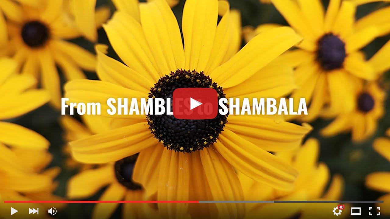 video_preview_bb7ca7222e345976ab9f532a1ed65d87.jpg
