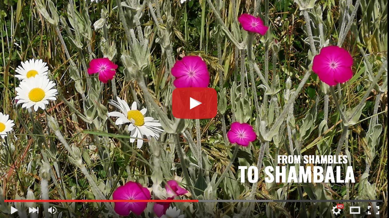 video_preview_f9743b4e3dbe0d3abc613d854e6d7fe1.jpg